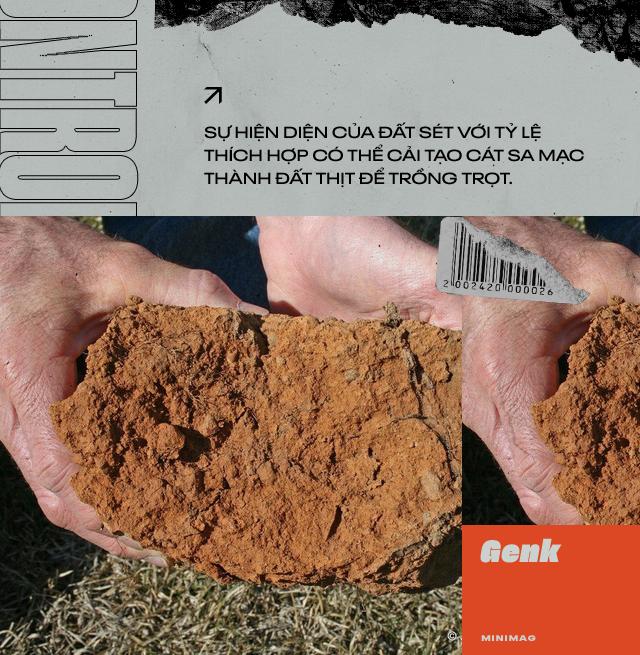 Đất sét nano: Công nghệ đột phá có thể biến sa mạc thành đồng ruộng trong 7 tiếng đồng hồ - Ảnh 3.