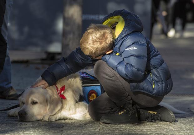 Câu chuyện cảm động về những chú chó trung thành nhất mọi thời đại khiến hàng triệu người không cầm được nước mắt - Ảnh 5.