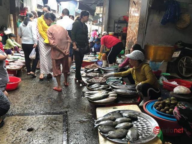Rau xanh khan hiếm, đắt ngang thịt gà, cá, tiểu thương không dám nhập bán - Ảnh 4.