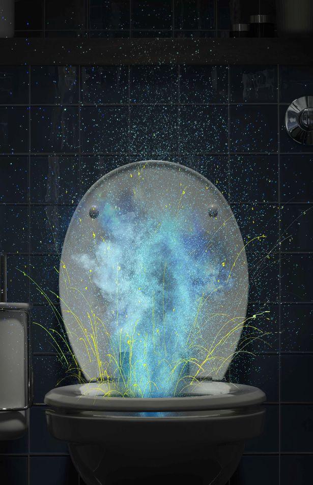 Cảnh báo rùng mình về 'màn pháo hoa' từ toilet: Vì sao nên đậy nắp toilet khi xả nước? - Ảnh 3.