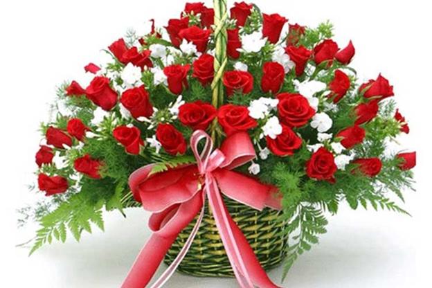 Gợi ý những món quà ý nghĩa tặng thầy cô vào ngày Nhà giáo Việt Nam 20/11 - Ảnh 1.