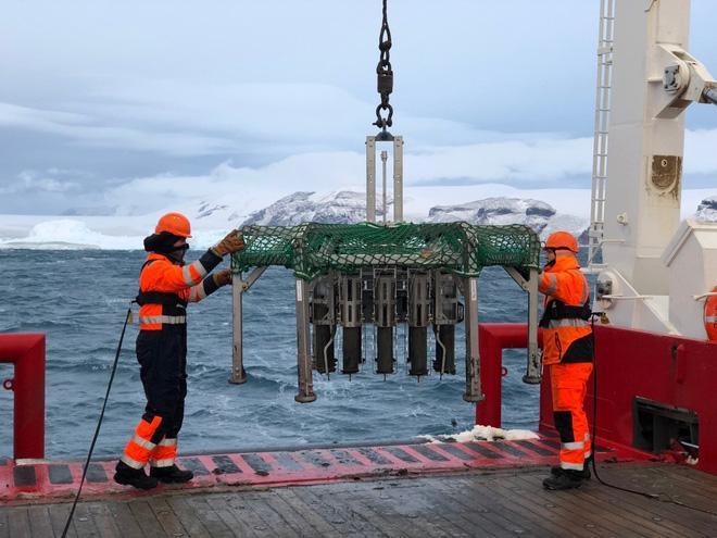 Sinh vật sống khỏe dưới lớp băng sâu 1 km ở Nam Cực - Ảnh 3.