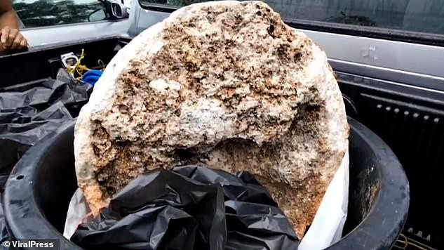 Ngư dân Thái Lan phát hiện khối u nghi là 'bãi nôn cá voi', có giá 74 tỉ đồng - ảnh 2