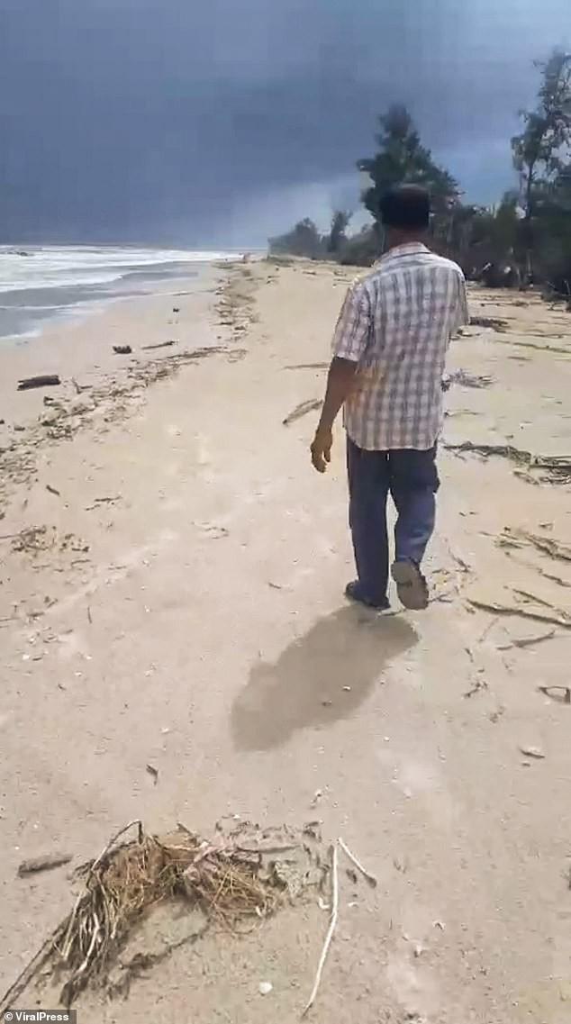 Ngư dân Thái Lan phát hiện khối u nghi là 'bãi nôn cá voi', có giá 74 tỉ đồng - ảnh 3