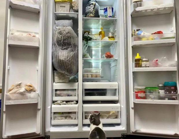 Hội FA xứ Trung khoe tủ lạnh: Người dùng bảo quản chăn bông và ô tô đồ chơi, kẻ lấy chỗ tích trữ đồ ăn cho quàng thượng - Ảnh 1.