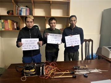 Bắt 3 thanh niên lái ô tô đi trộm chó liên tỉnh  - Ảnh 4.