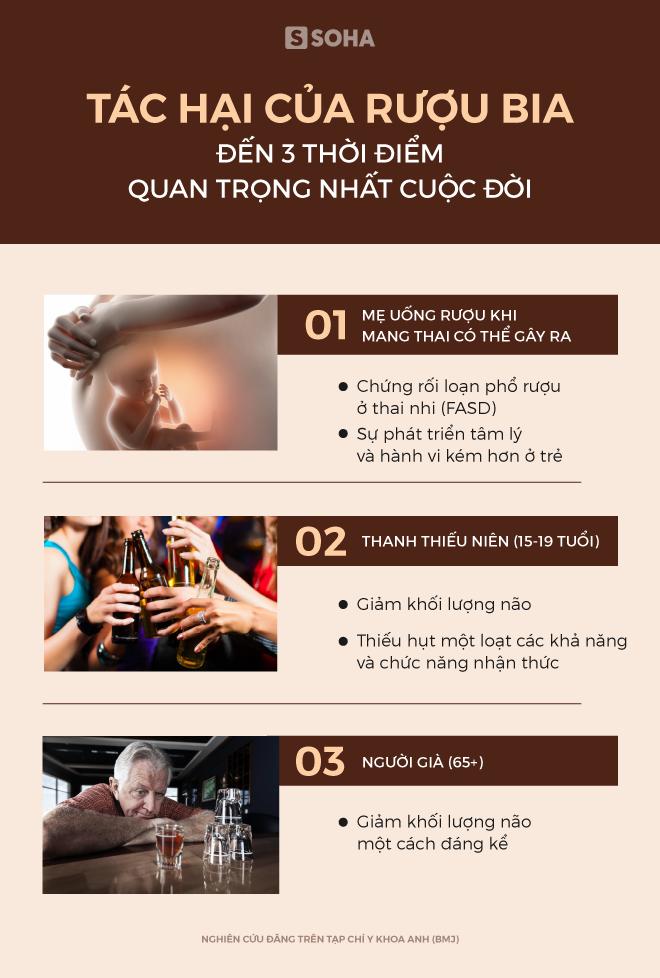 [Ảnh sức khỏe] Rượu bia đặc biệt gây tác hại ở 3 thời điểm quan trọng nhất cuộc đời, dù chỉ uống vừa phải - Ảnh 1.