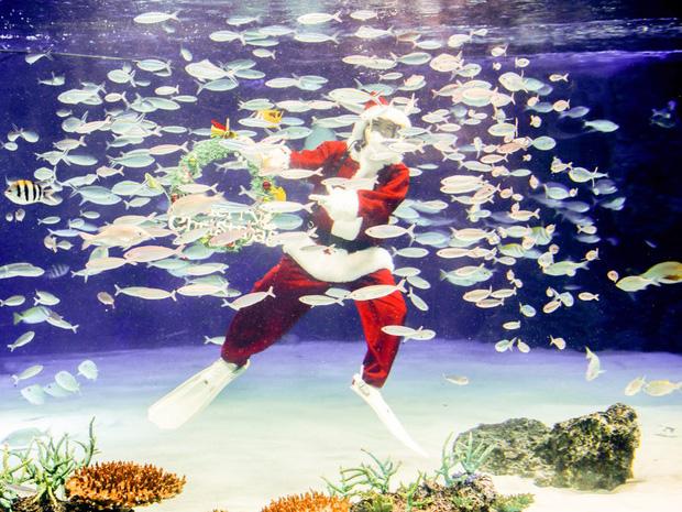 Khi mùa Noel vẫn trùng mùa dịch Covid-19: Nhìn ảnh để thấy thế giới thực sự đang đón một Giáng sinh kỳ lạ nhất từ trước đến nay - Ảnh 10.