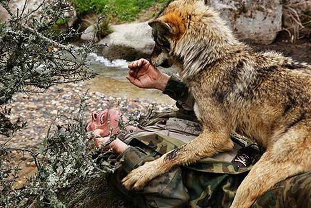 Câu chuyện có thật về cậu bé rừng xanh được bầy sói nuôi dưỡng trong 12 năm và cuộc sống sau khi tái hòa nhập cộng đồng con người - Ảnh 2.