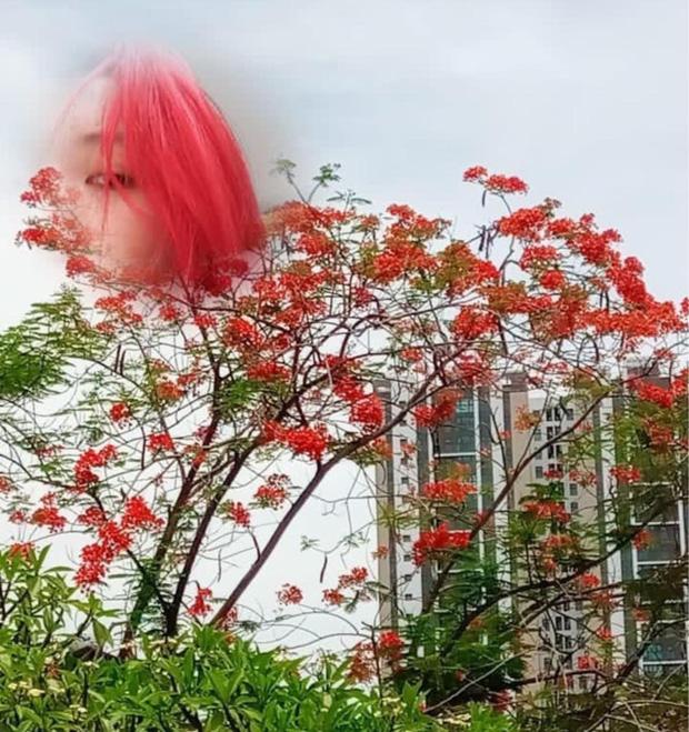 Nữ sinh 2K1 'chơi lớn' nhuộm tóc ton sur ton với các toà nhà của trường, xem thành tích học càng choáng váng hơn - ảnh 9