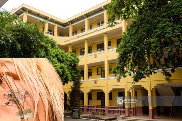 Nữ sinh 2K1 'chơi lớn' nhuộm tóc ton sur ton với các toà nhà của trường, xem thành tích học càng choáng váng hơn - ảnh 10