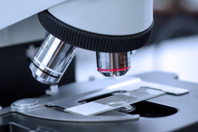 Phát triển thành công kính hiển vi có thể nhìn xuyên thấu qua hộp sọ của bạn một cách an toàn - Ảnh 1.
