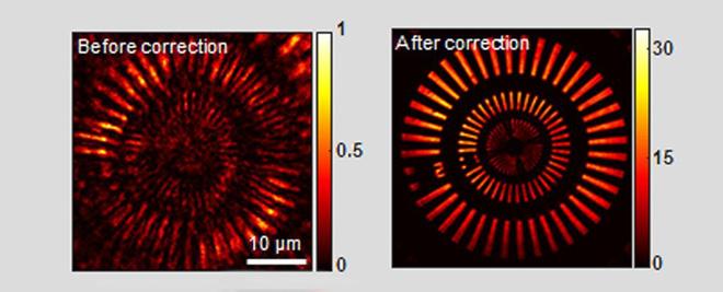Phát triển thành công kính hiển vi có thể nhìn xuyên thấu qua hộp sọ của bạn một cách an toàn - Ảnh 2.