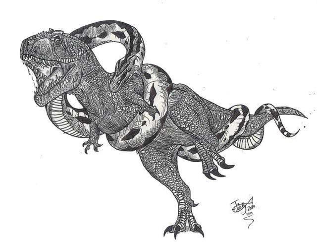 Những loài sinh vật kinh dị và đáng sợ, vượt qua trí tưởng tượng của con người (P.2) - Ảnh 7.