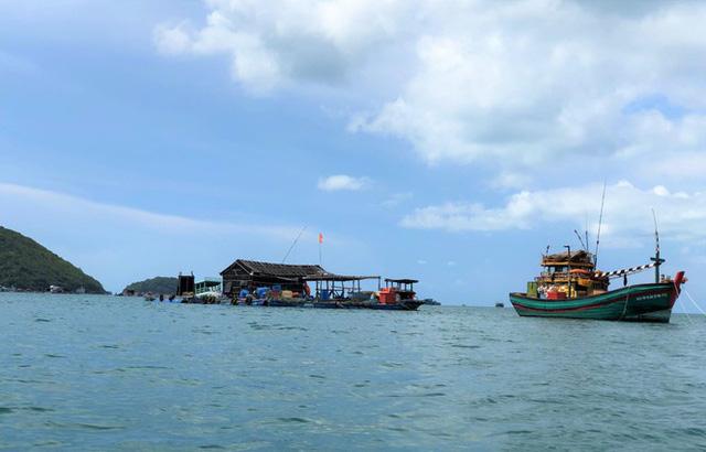 Nuôi cá lồng bè ở Nam Du, thu hàng trăm triệu mỗi năm - Ảnh 1.