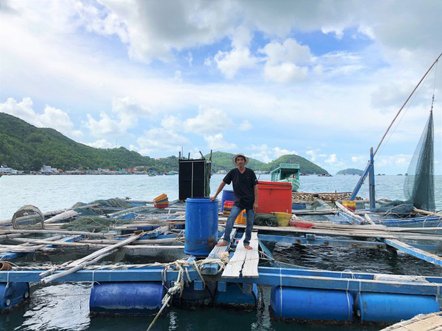 Nuôi cá lồng bè ở Nam Du, thu hàng trăm triệu mỗi năm - Ảnh 3.