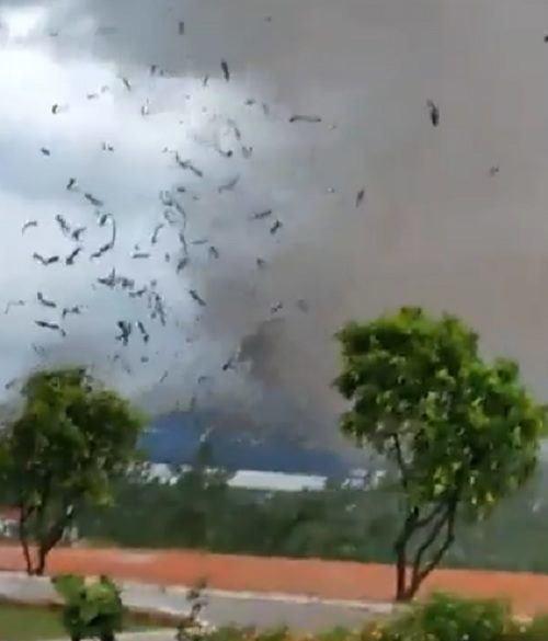 Hiện trường tan hoang vụ sập nhà xưởng ở Vĩnh Phúc làm 3 người chết, 18 người bị thương - Ảnh 11.