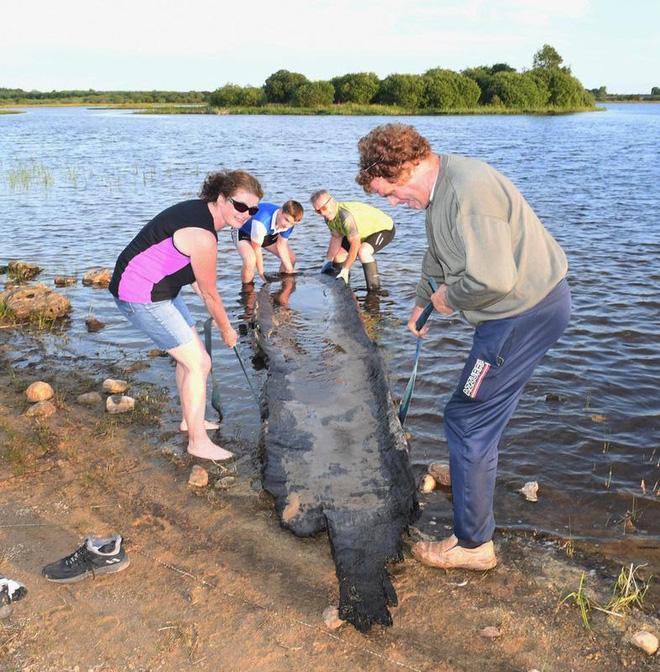 Bé trai 12 tuổi tìm thấy thuyền cổ 4.000 tuổi chấn động giới khảo cổ - Ảnh 2.