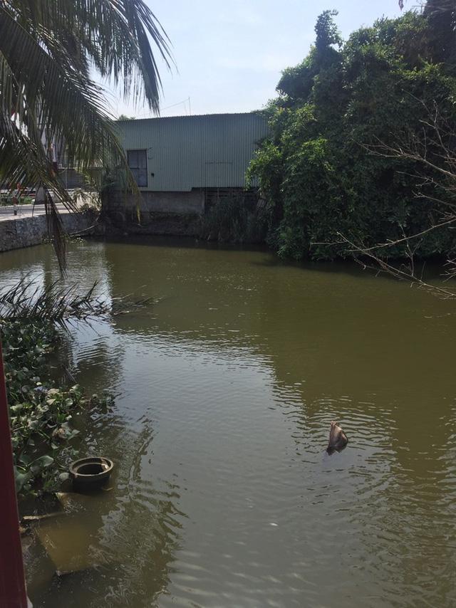 Hải Phòng thu hồi toàn bộ nước đóng chai hóa phép từ mương nước thải - Ảnh 2.