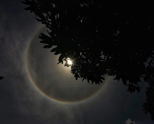 Người dân Sài Gòn, Vũng Tàu và nhiều tỉnh thành thích thú chụp lại hiện tượng quầng sáng bao quanh mặt trời - Ảnh 6.