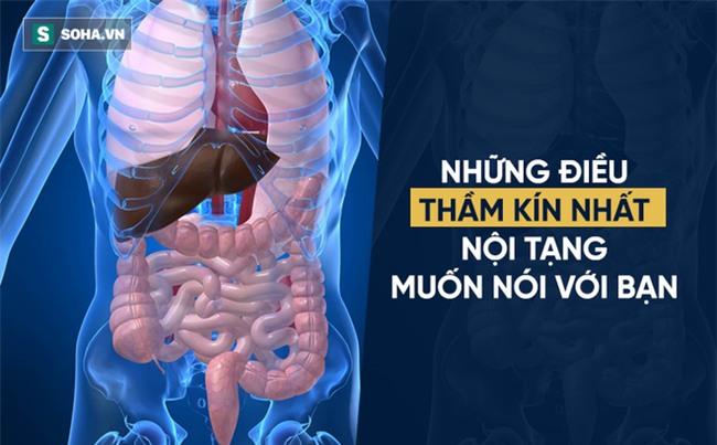 Cảm giác thèm tiết lộ sức khỏe của nội tạng: Cơ thể có vấn đề, khẩu vị sẽ mách bạn - Ảnh 1.