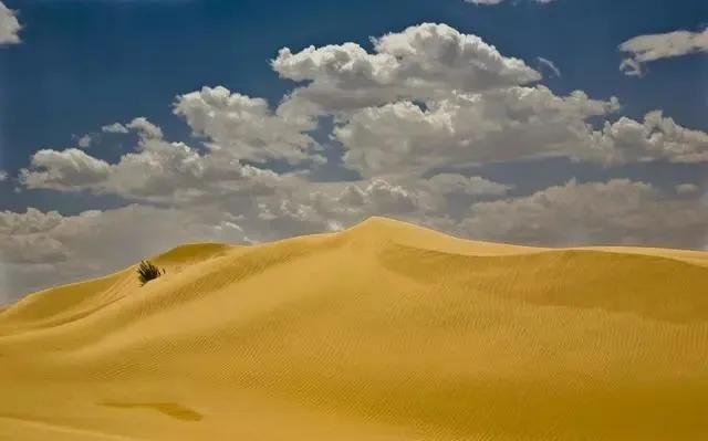 Đi tìm kho báu trên sa mạc rộng lớn bỗng gặp một nhóm người lạ mặt, bạn sẽ làm gì? Câu trả lời sẽ tiết lộ tính cách của bạn - Ảnh 2.
