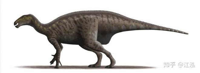 Úc phát hiện ra hóa thạch khủng long biến thành đá quý - Ảnh 11.