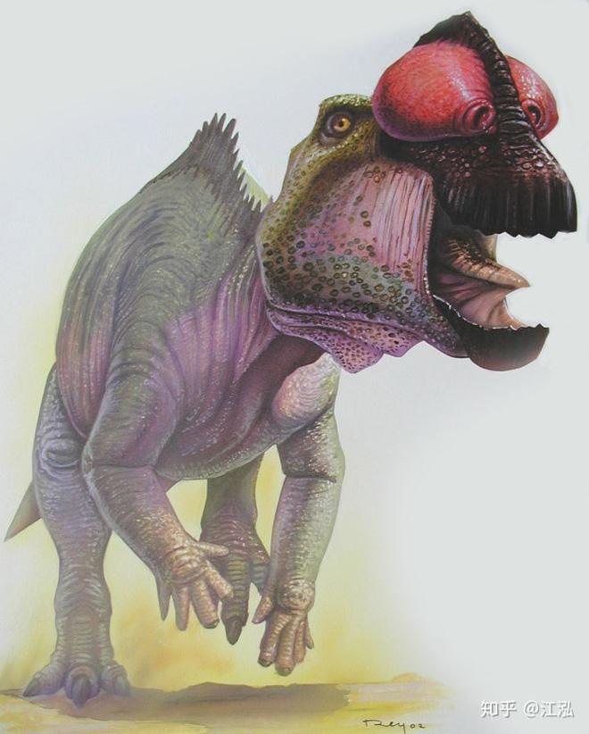 Úc phát hiện ra hóa thạch khủng long biến thành đá quý - Ảnh 14.