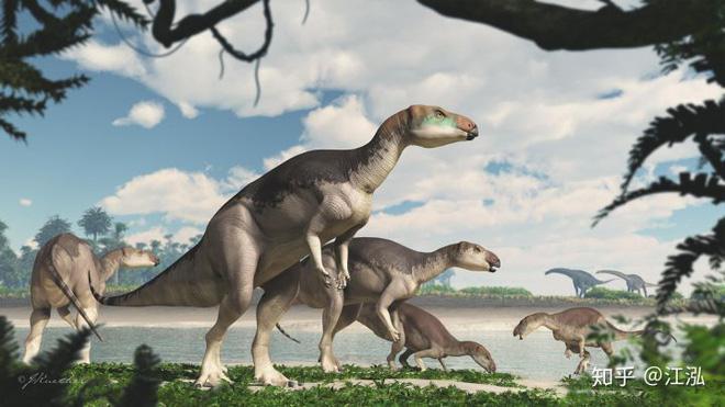 Úc phát hiện ra hóa thạch khủng long biến thành đá quý - Ảnh 16.
