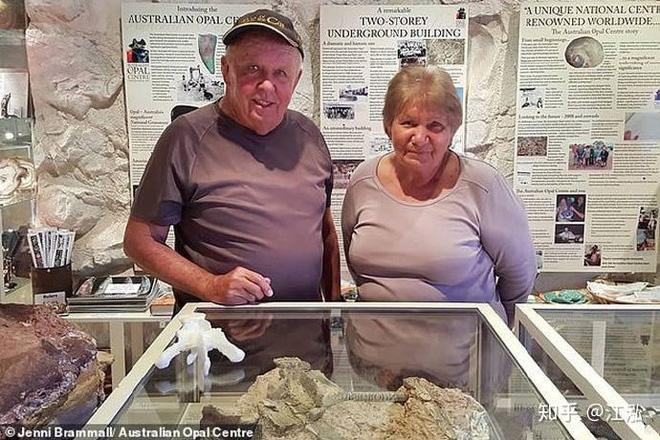 Úc phát hiện ra hóa thạch khủng long biến thành đá quý - Ảnh 6.