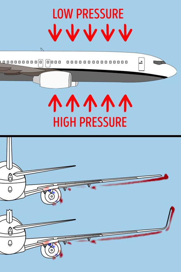 Tại sao chỉ được xách 7kg hành lý, phi công không được để râu: Loạt bí ẩn khi đi máy bay khiến bạn ngã ngửa - Ảnh 2.