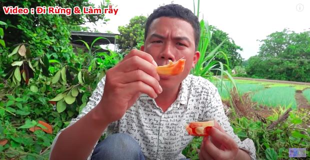"""Thực hư về quả mít vỏ đỏ """"độc nhất vô nhị"""" tại Việt Nam đang khiến cộng đồng mạng tranh cãi: Lẽ nào lại là chiêu trò """"câu view""""? - Ảnh 11."""