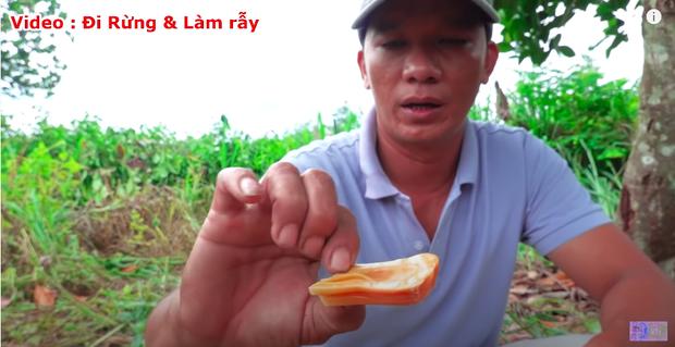 """Thực hư về quả mít vỏ đỏ """"độc nhất vô nhị"""" tại Việt Nam đang khiến cộng đồng mạng tranh cãi: Lẽ nào lại là chiêu trò """"câu view""""? - Ảnh 10."""