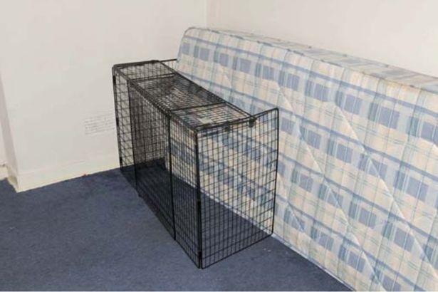 Bé trai 2 tuổi qua đời sau khi bị mẹ và nhân tình bạo hành, nhốt trong phòng với chuột, bằng chứng tra tấn đứa trẻ gây phẫn nộ - Ảnh 3.