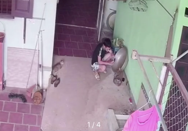 Chăm sóc chim non hơn trứng mỏng, anh chàng thất thần chỉ vì 1 giây bất cẩn mà cái kết quá đắng lòng - Ảnh 1.