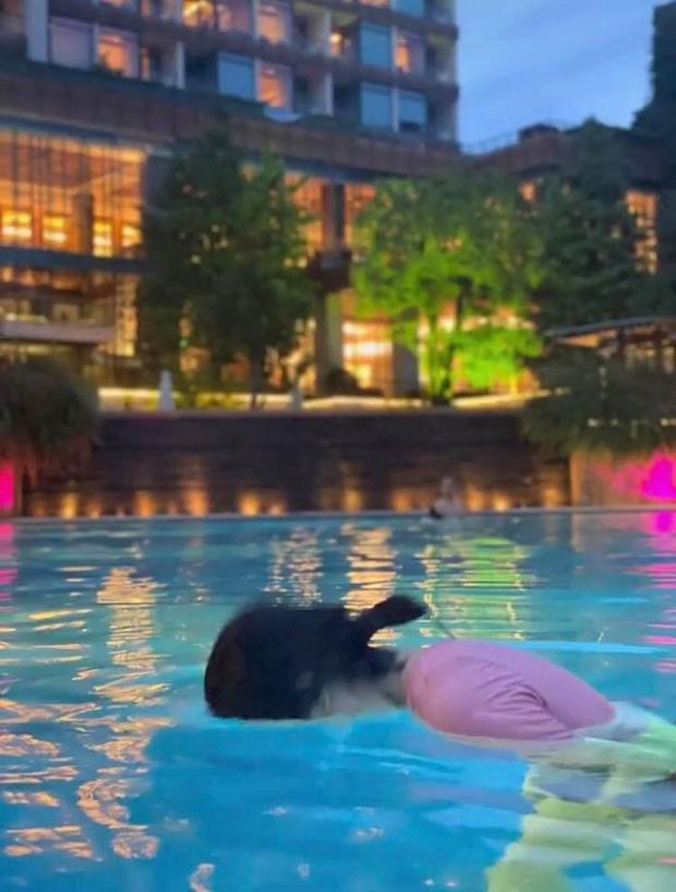 """Nhờ bạn thân chụp cho bộ hình quyến rũ ở hồ bơi, cô nàng nhận về loạt ảnh """"biến dạng"""" đến tức tưởi! - Ảnh 2."""