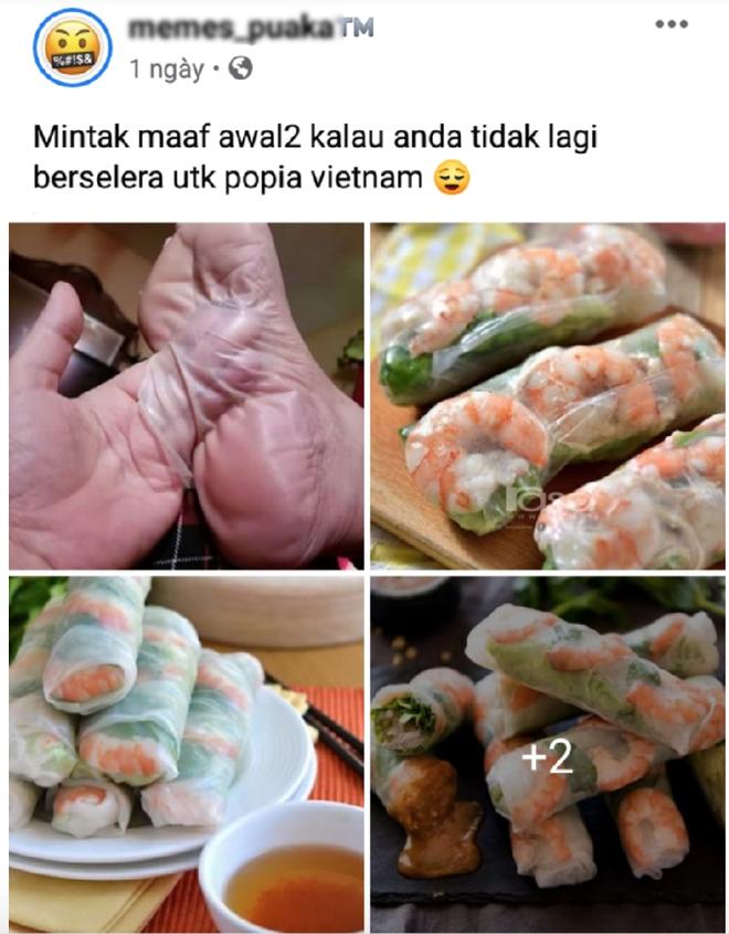 So sánh gỏi cuốn của Việt Nam với da chân người, một fanpage Malaysia khiến cộng đồng mạng phẫn nộ, hiện tại đã... biến mất - Ảnh 1.