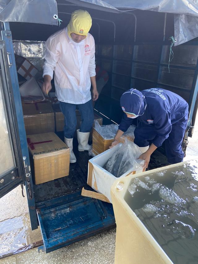 Bắt quả tang cơ sở đang đưa tạp chất vào tôm nguyên liệu tại Kiên Giang - Ảnh 3.