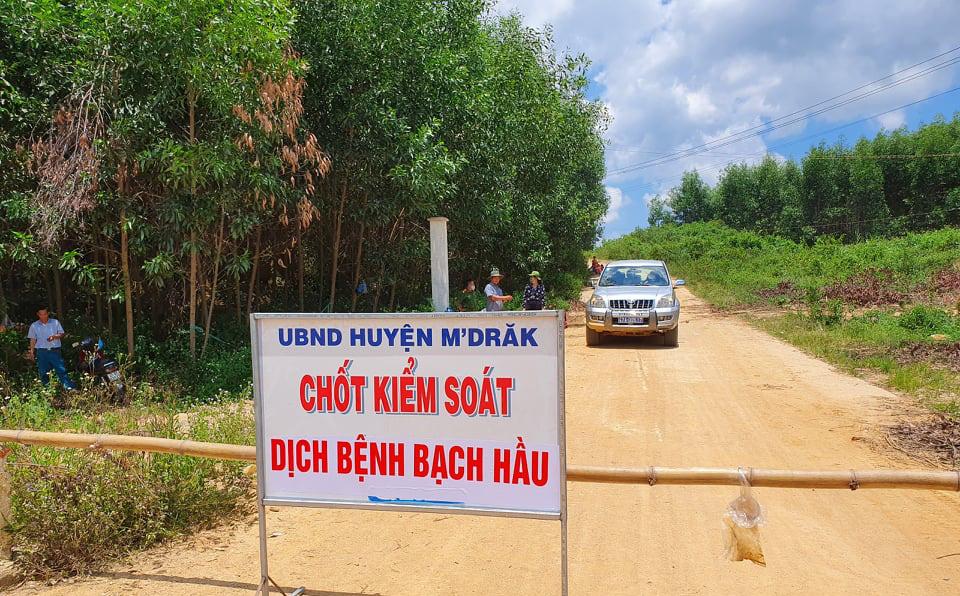Thêm 2 trường hợp tại tỉnh Đắk Lắk dương tính với bạch hầu