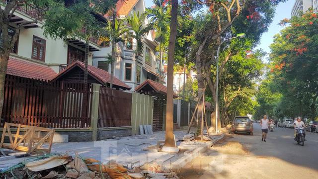 Chủ biệt thự đô thị kiểu mẫu Hà Nội chơi ngông tự chặt cây, lát vỉa hè đế vương - Ảnh 1.