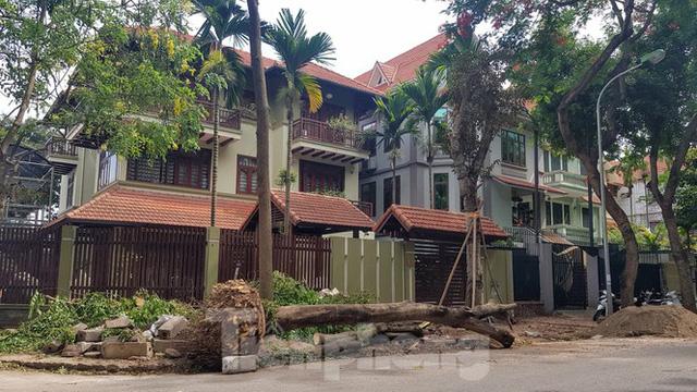 Chủ biệt thự đô thị kiểu mẫu Hà Nội chơi ngông tự chặt cây, lát vỉa hè đế vương - Ảnh 3.