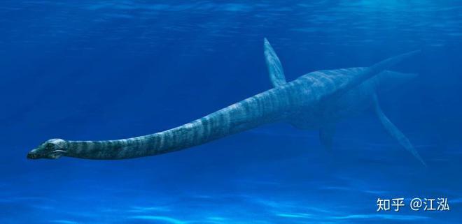 Bằng chứng khảo cổ cho thấy cá mập cổ đại đã phi lên khỏi mặt nước để tấn công thằn lằn bay - Ảnh 1.