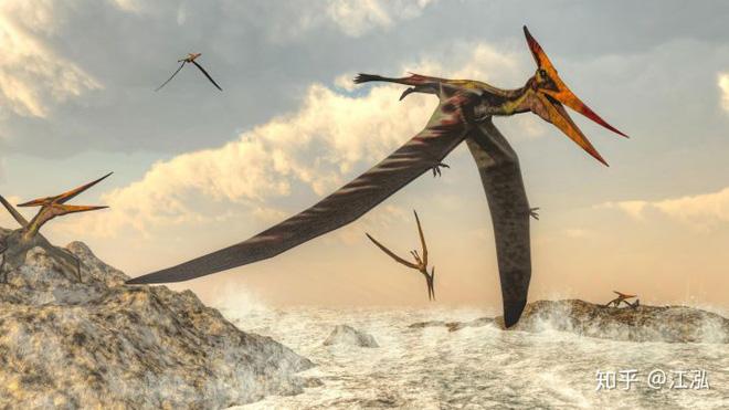 Bằng chứng khảo cổ cho thấy cá mập cổ đại đã phi lên khỏi mặt nước để tấn công thằn lằn bay - Ảnh 2.
