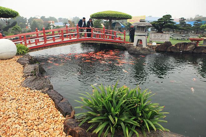 Chơi cây cảnh tiền tỷ chưa đã, đại gia nổi danh Thái Nguyên mua hẳn đá quý làm hồ cá Koi - Ảnh 1.