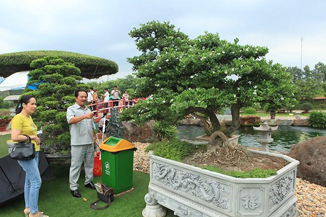 Chơi cây cảnh tiền tỷ chưa đã, đại gia nổi danh Thái Nguyên mua hẳn đá quý làm hồ cá Koi - Ảnh 7.