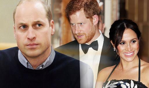 Vợ chồng Meghan Markle muối mặt khi bị tố sử dụng tiền từ thiện trái mục đích khiến Hoàng tử William bị liên lụy - Ảnh 4.