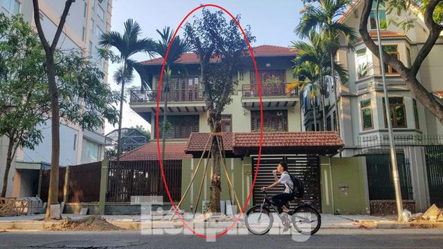 Cận cảnh biệt thự đô thị mẫu Hà Nội đua nhau thay cây xanh, lát vỉa hè sai quy hoạch - Ảnh 4.