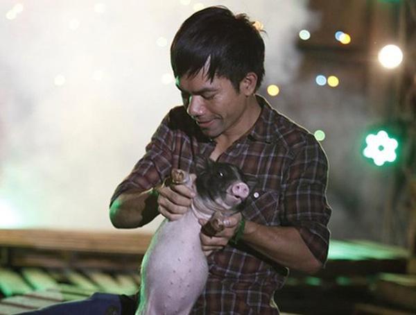Số phận của Siu Black, Hoài Lâm, Yasuy: Hào quang showbiz không bằng về quê chăn lợn, nuôi gà, trồng lúa bán cà phê?  - Ảnh 6.