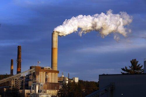 3 vụ án môi trường chấn động nước Mỹ: Walt Disney, chính phủ TT Bush đã thất bại thế nào? - Ảnh 5.