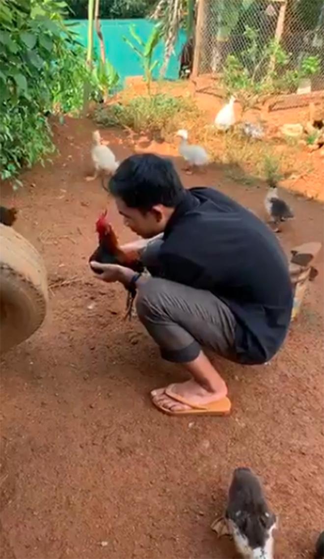 Thấy tôi đăng clip làm vườn, quây quần với đàn gà, nhiều người không ngờ, thậm chí cười khinh! - Ảnh 5.